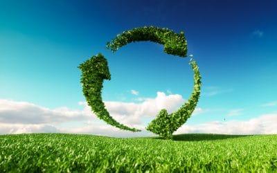 Nachhaltig: Der unendliche Zauberwatte®-Kreislauf