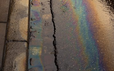 Ölverschmutzungen: So handeln Sie richtig